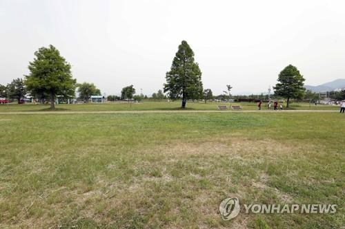 여름밤 낙동강변서 걷기대회…부산나이트워크 내달 열려