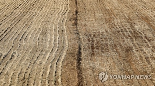 Aftershocks result in soil movement in Pohang - 1