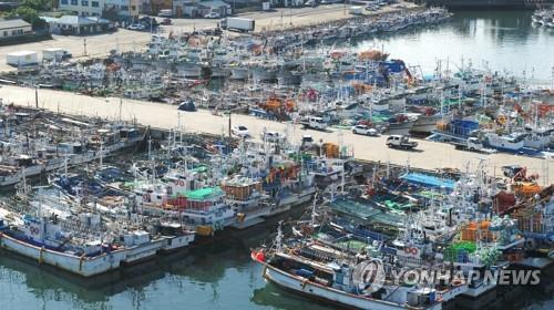 Hundreds of fishing vessels lie at anchor at a port on Jeju Island on Aug. 25, as Typhoon Bavi approaches the Korean Peninsula. (Yonhap)