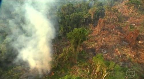 고의 방화로 불타는 아마존 열대우림 [브라질 뉴스포털 G1]