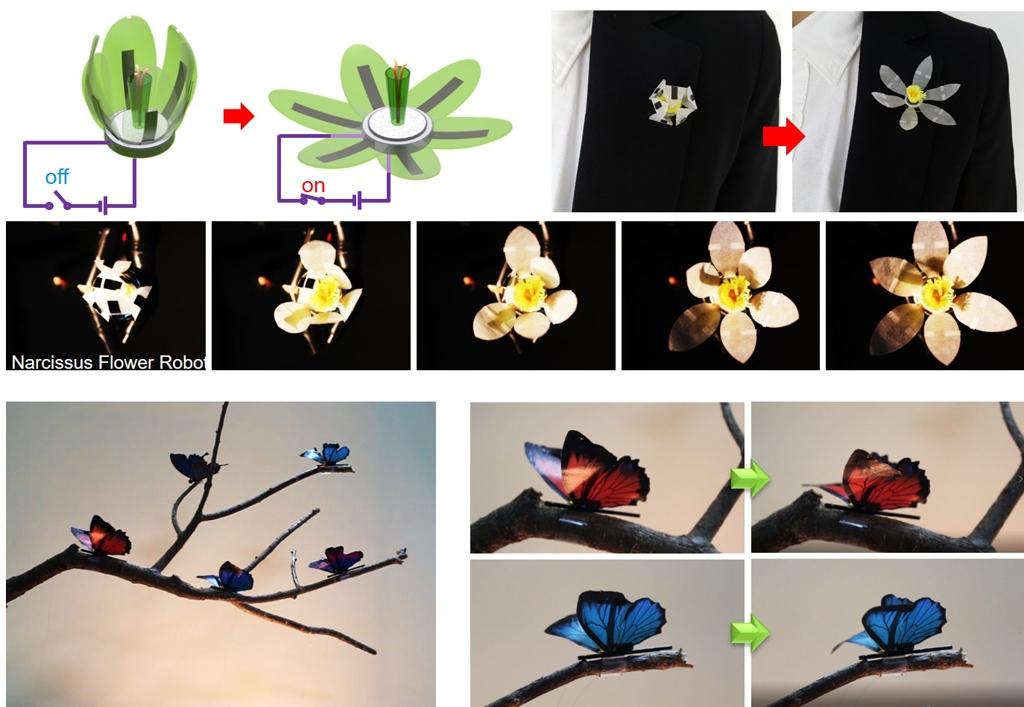 로봇용 인공 근육이 부드러운 나비 날갯짓 감쪽같이 구현 | 연합뉴스