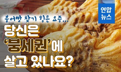 [D스토리] 붕어빵 찾기 힘든 요즘…당신은 '붕세권'에 살고 있나요? - 2