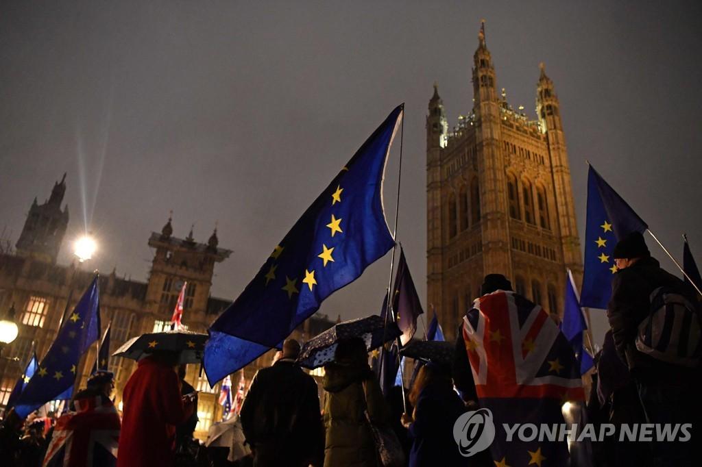 영국 의사당 밖 브렉시트 반대 시위대 [AFP=연합뉴스]