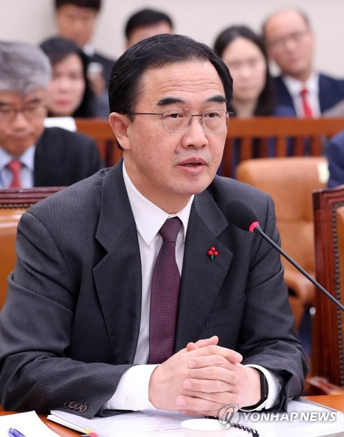 Minister says early months of 2019 critical for N. Korea's denuclearization prospects