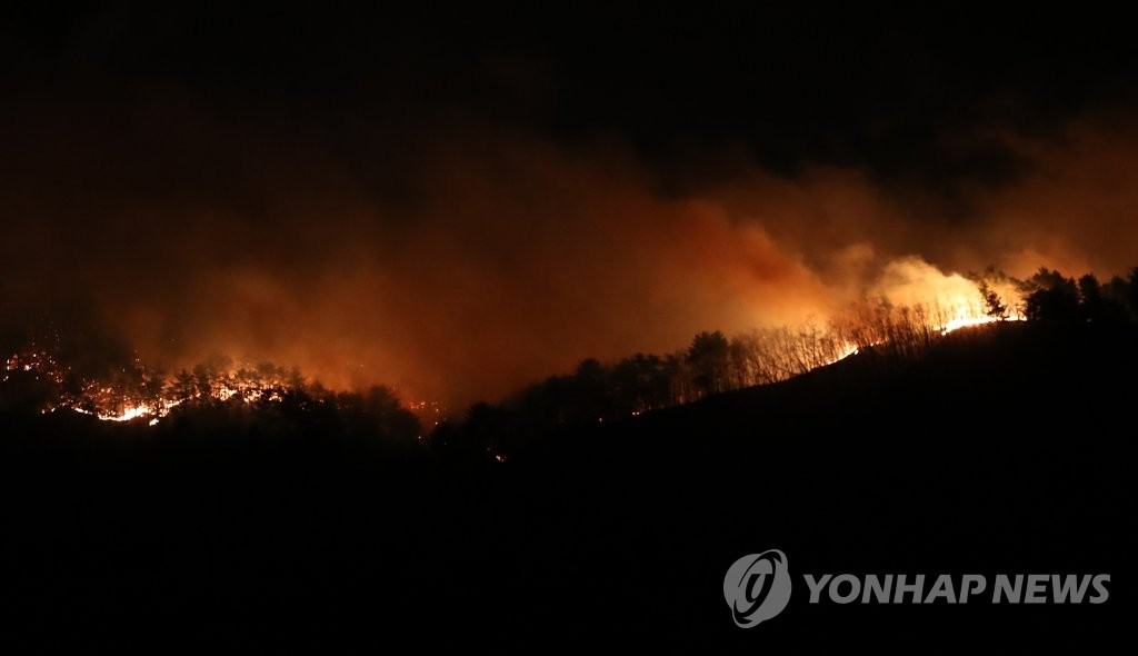 Fire spreads across the forest on a mountain in Goseong, Gangwon Province, on April 4, 2019. (Yonhap)
