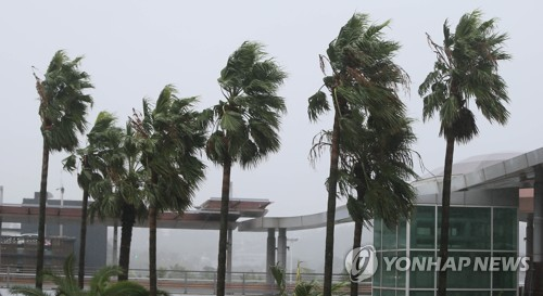 Typhoon brings strong winds to Jeju Island