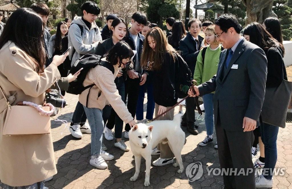 대한민국 국견대회서 대상 받은 한남대 '한남이'
