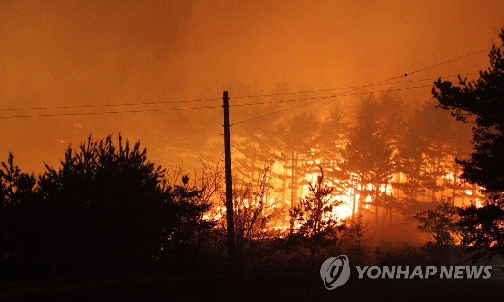 A fire burns through a forest in Goseong, 210 kilometers northeast of Seoul in Gangwon Province, on May 1, 2020. (Yonhap)